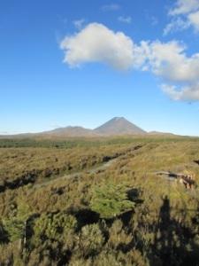 Tongariro_0211