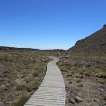 Tongariro_0295