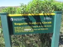 Tongariro_0313