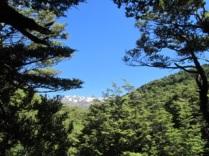 Tongariro_0325